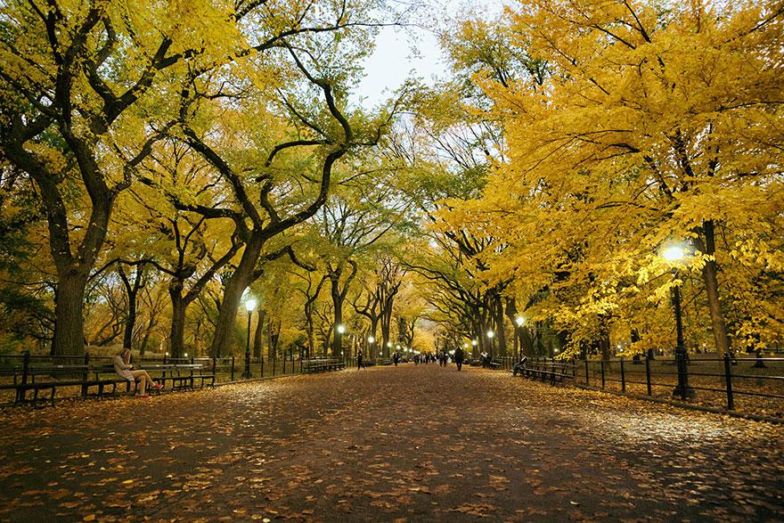 comparacoes-paisagens-outono_6b