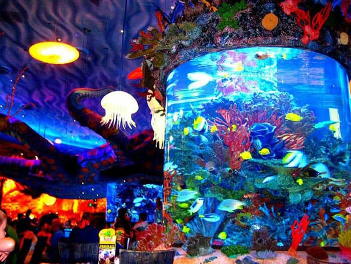 aquarios-fantasticos_1