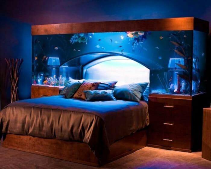 aquarios-fantasticos_13
