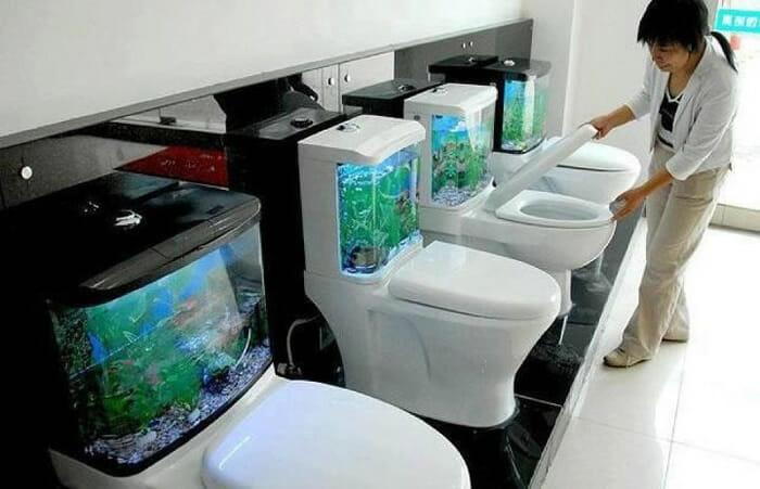 aquarios-fantasticos_17