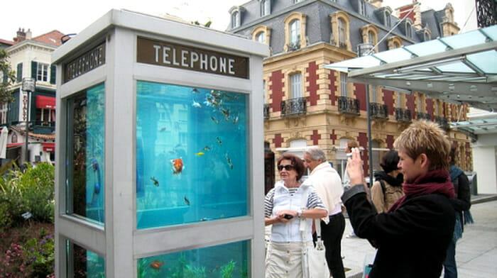 aquarios-fantasticos_19