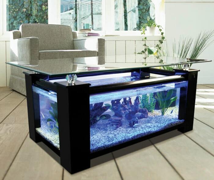 aquarios-fantasticos_2