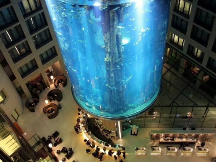 aquarios-fantasticos_4