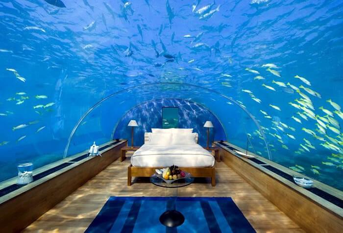 aquarios-fantasticos_6
