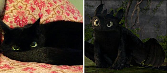 Gatos Que Se Parecem Com Pessoas 1
