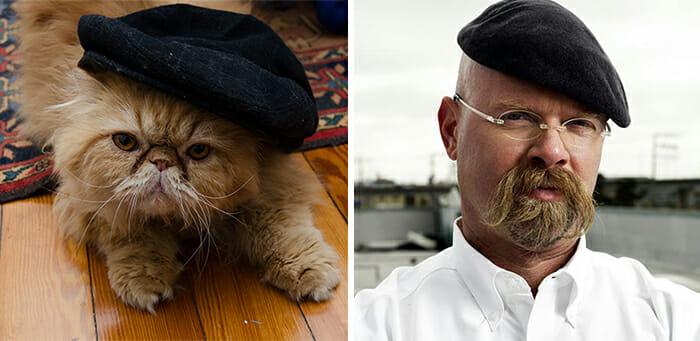 Gatos Que Se Parecem Com Pessoas 8