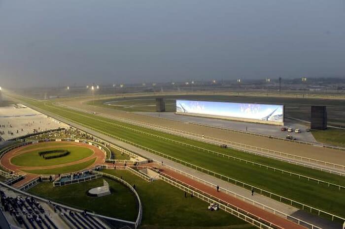 Meydan Racecourse display screen