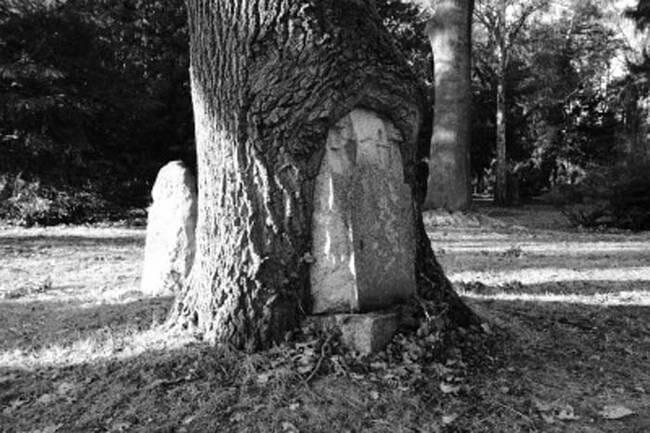 sepultura-estranha-interessante-assustadora_7