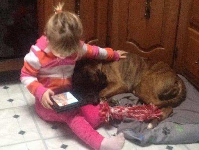 15 Crianças que aprenderam cedo que os cães são nossos melhores amigos