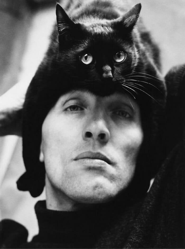 Chapéus de gatos: Os 20 chapéus mais lindos que você já viu!