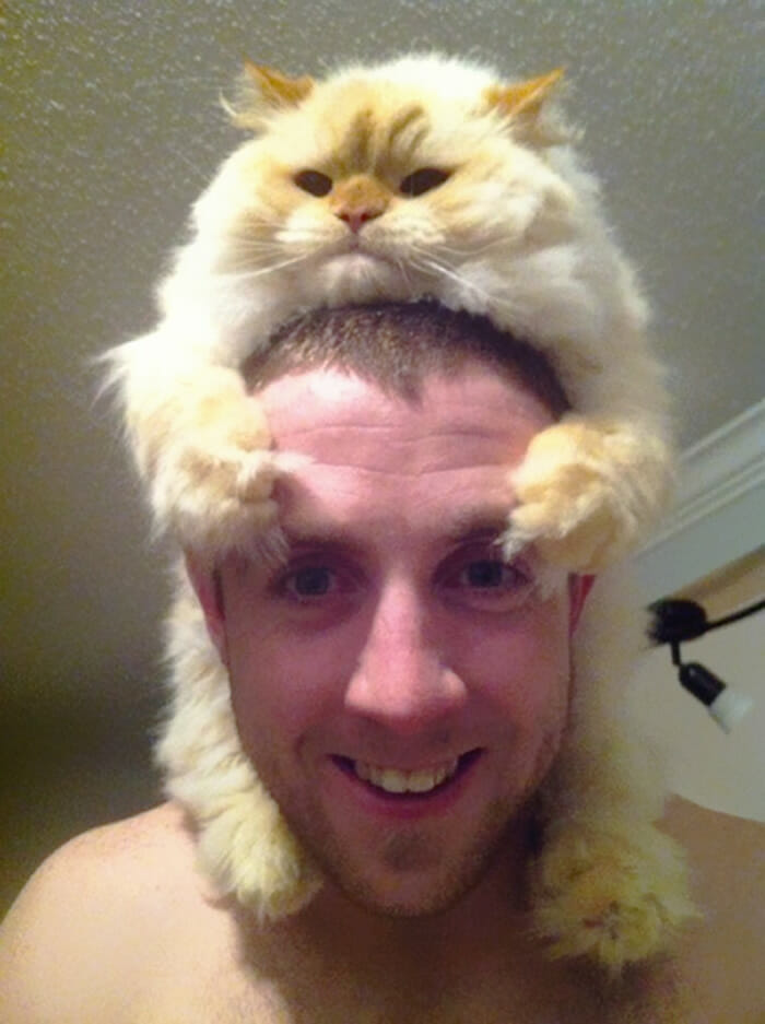 Cats Wearing Hats Of Own Flugg