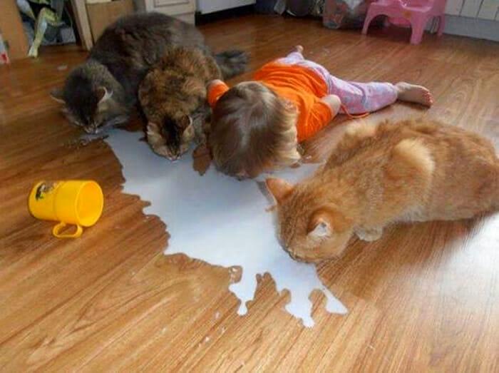 20 Crianças que estão confusas e pensam que são animais