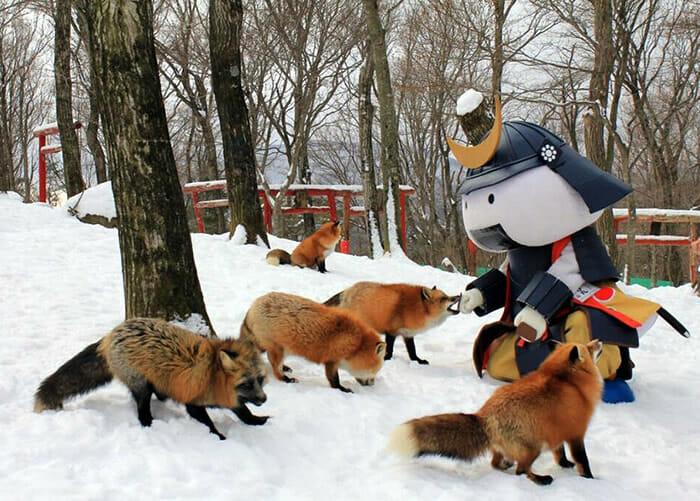 vila-das-raposas-japao_4
