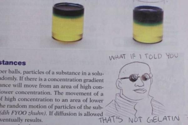 criatividade-em-livros-escolares_10
