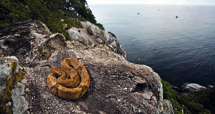 ilhas-assustadoras-misteriosas_6