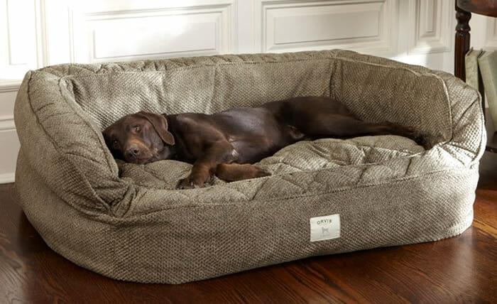 cama-de-cachorro_12