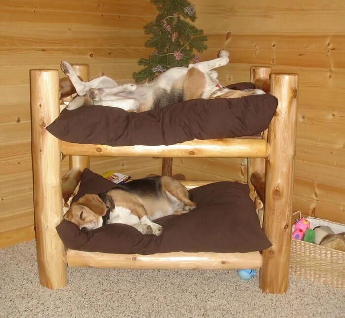 cama-de-cachorro_23