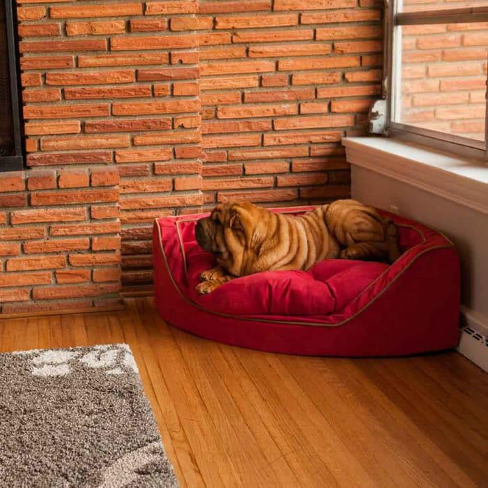 cama-de-cachorro_29