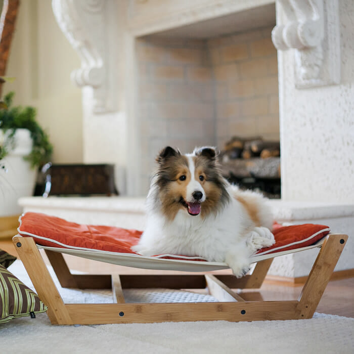 cama-de-cachorro_4