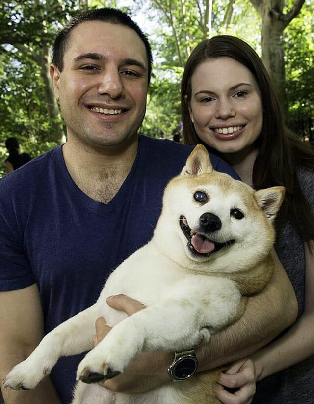 cinnamon-cachorro-mais-feliz-do-mundo_7