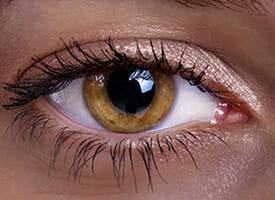 olhos cor-de-mel ou olhos âmbar
