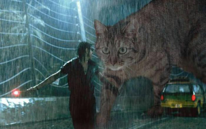 20 Fotos engraçadas substituem os dinossauros do filme Jurassic Park por gatos