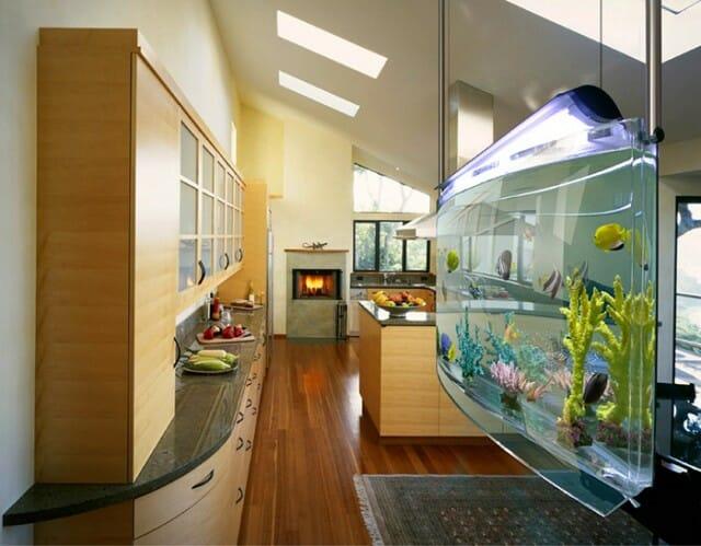 10 Modelos legais e diferentes de aquários para equipar sua casa