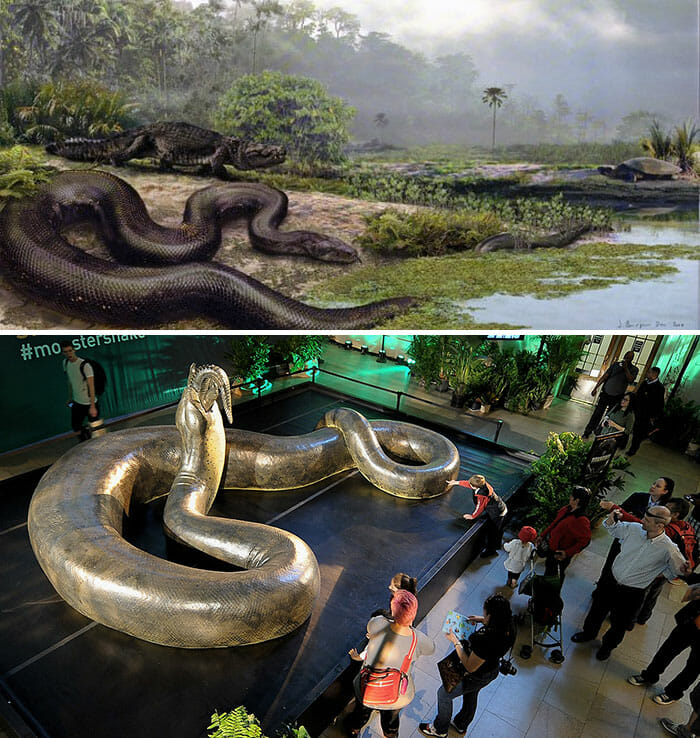 Titanoboa Replica On Display At Grand Central Terminal