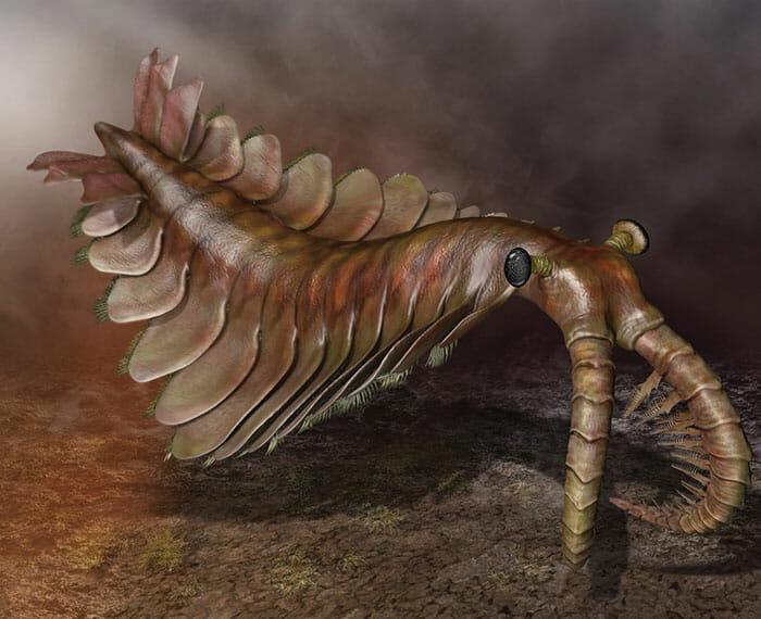 criaturas-aterrorizantes-extintas_7
