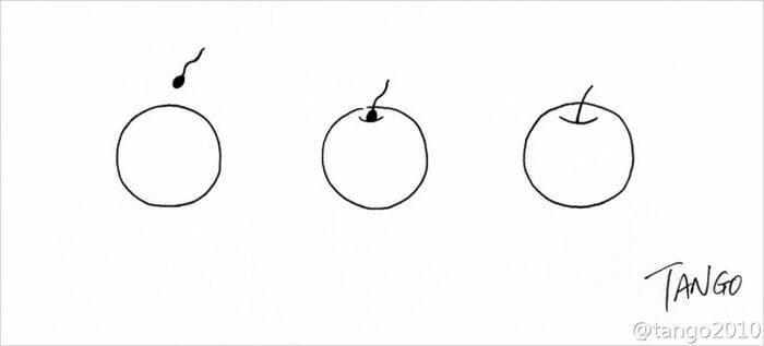 melhores-tirinhas-cartunista-tango_3