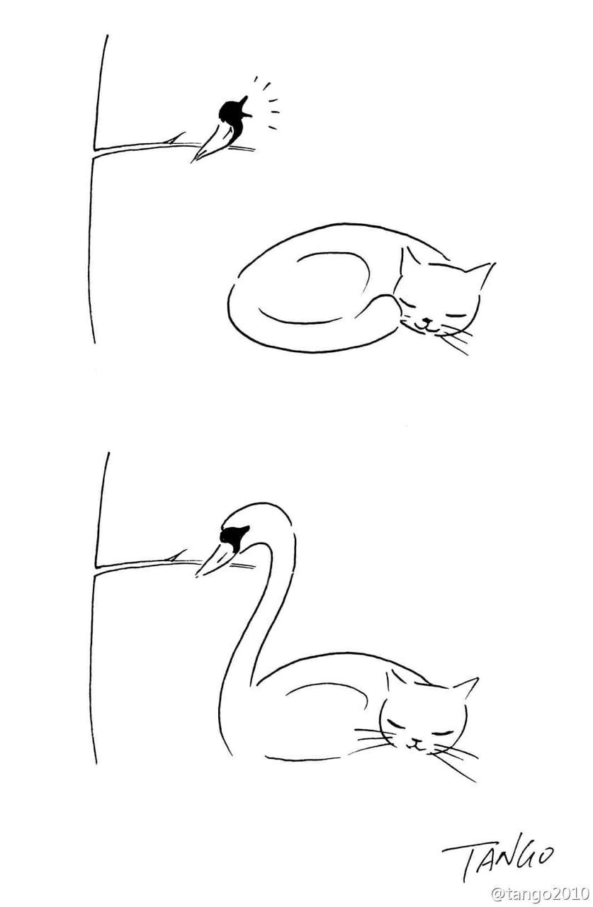 melhores-tirinhas-cartunista-tango_30