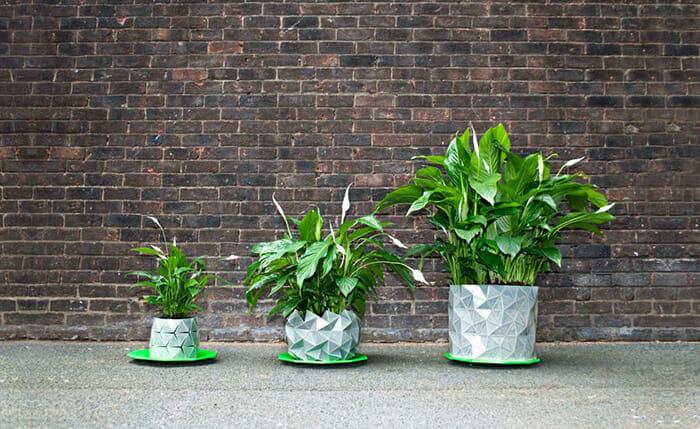 vasos-de-plantas-creativos_4a