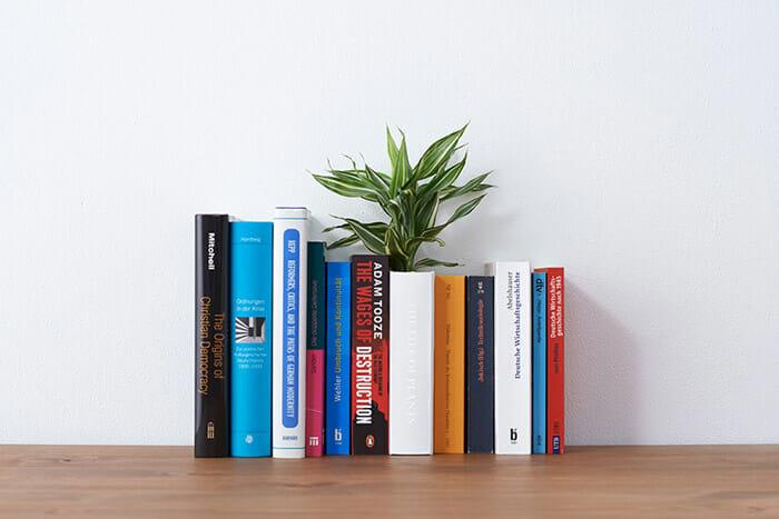 vasos-de-plantas-creativos_7a