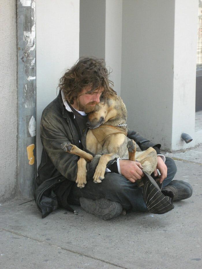 cachorro-fiel_18