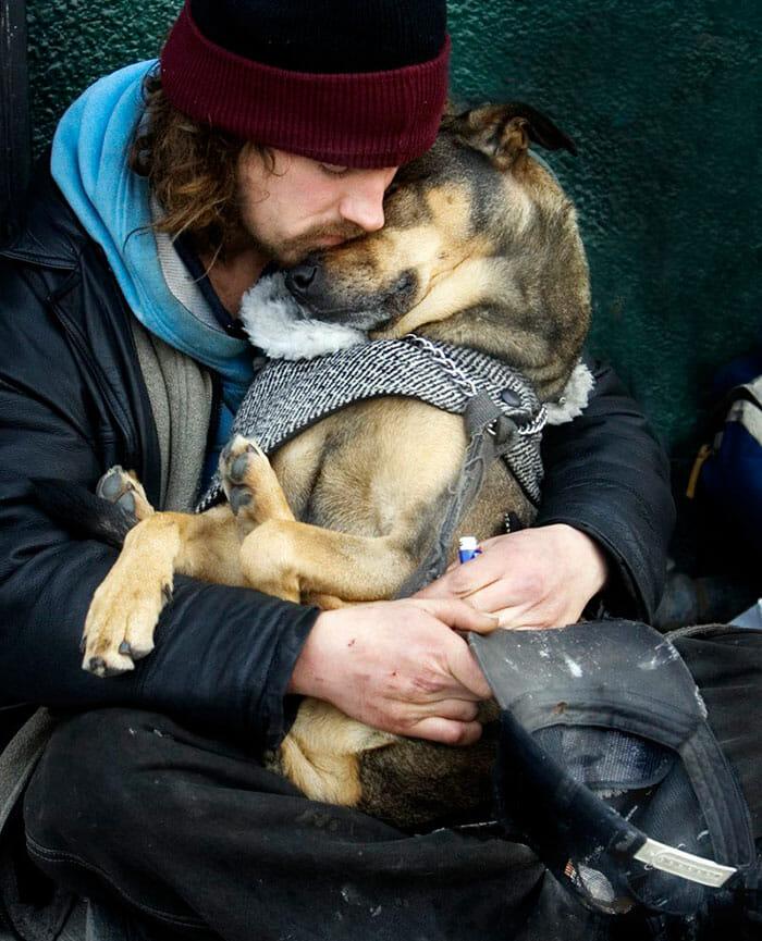 cachorro-fiel_3