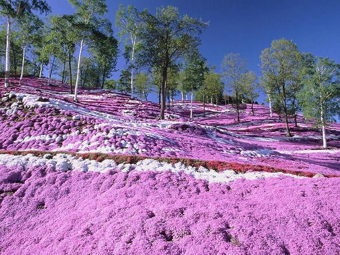 lugares-coloridos-planeta-terra_3b