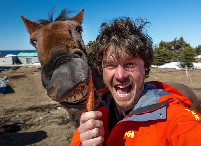 selfies-animais-allan-dixon
