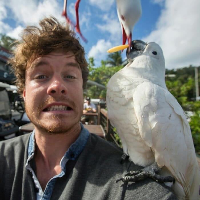 selfies-animais-allan-dixon_11