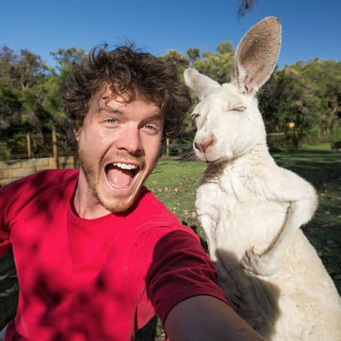 selfies-animais-allan-dixon_13