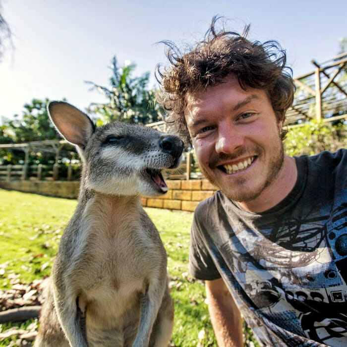 selfies-animais-allan-dixon_14