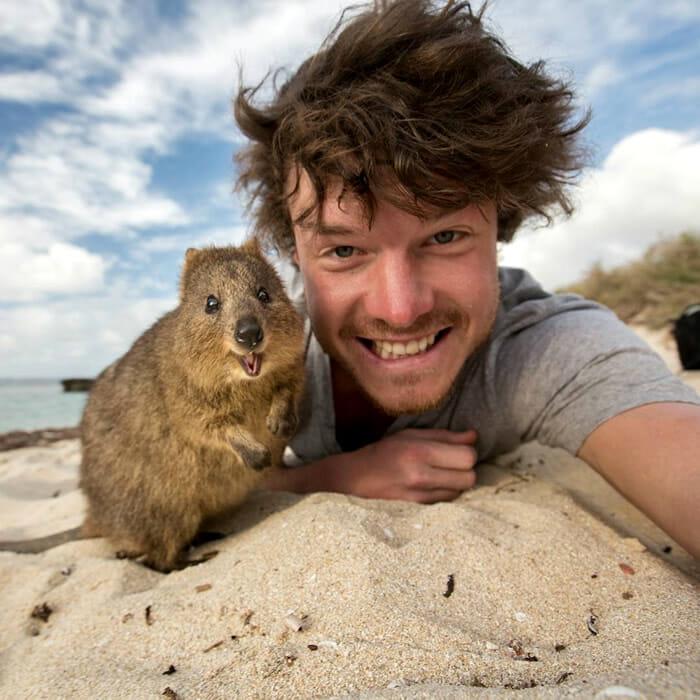 selfies-animais-allan-dixon_6