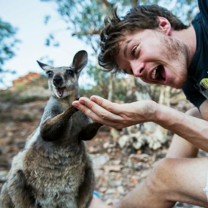 selfies-animais-allan-dixon_7