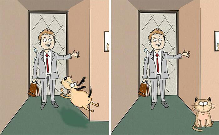 diferencas-gato-vs-cao