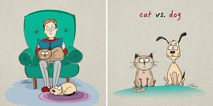 diferencas-gato-vs-cao_1