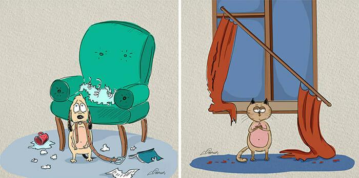 diferencas-gato-vs-cao_5