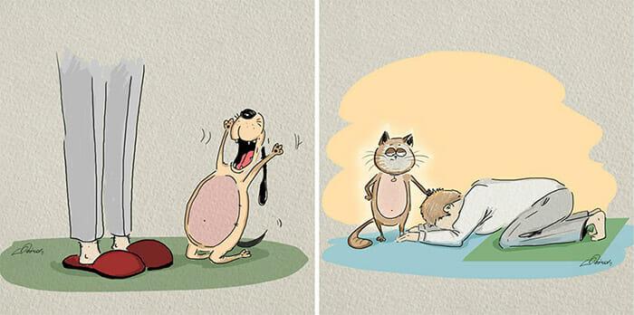 diferencas-gato-vs-cao_6