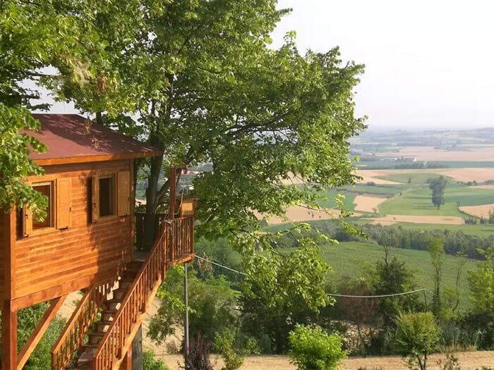 casas-na-arvore-airbnb_2d