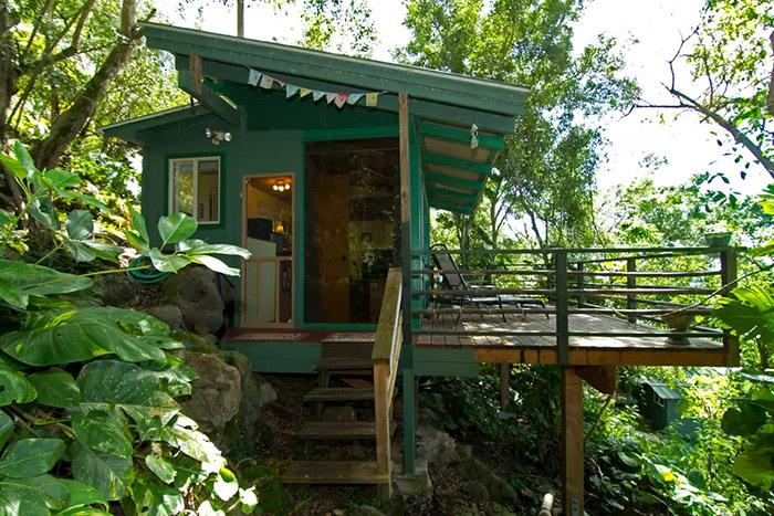 casas-na-arvore-airbnb_4a