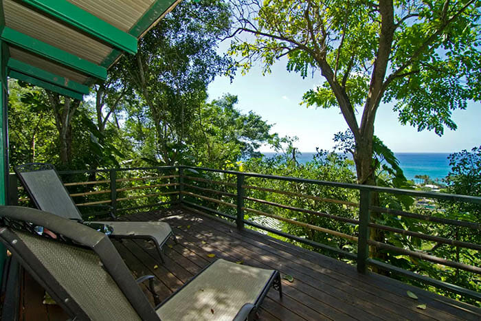 casas-na-arvore-airbnb_4c