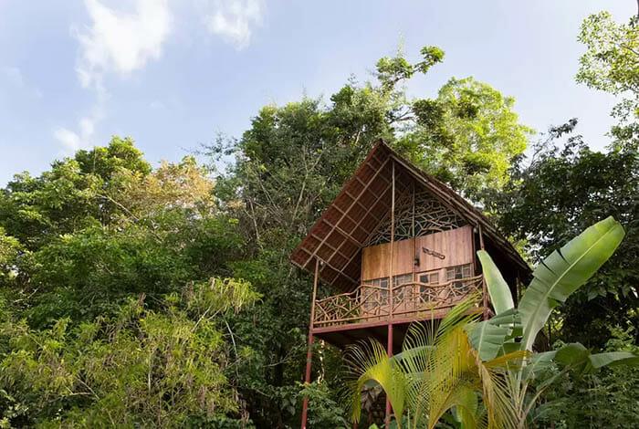 casas-na-arvore-airbnb_5a